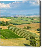 Scenic Tuscany Landscape At Sunset, Val D'orcia, Italy Acrylic Print
