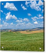 Scenic Tuscany Landscape With Rolling Hills In Val D'orcia, Ital Acrylic Print