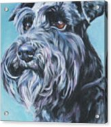 Schnauzer Acrylic Print by Lee Ann Shepard