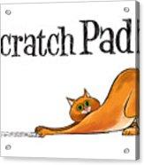 Scratchy Cat Acrylic Print