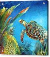 Sea Escape Iv - Hawksbill Turtle Flying Free Acrylic Print