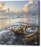 Sea Jewel Acrylic Print