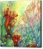 Seaflowers II Acrylic Print