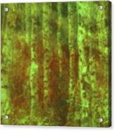Secret Forest Acrylic Print