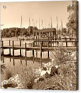 Sepia Waterscape Acrylic Print