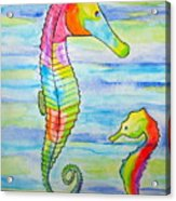 Shave-ice Seahorses Acrylic Print