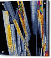 Sildenfil Nitrate, Polarized Lm Acrylic Print