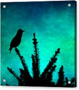 Silhouette Blues Acrylic Print