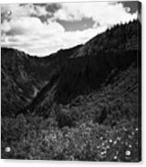 Silver Star Mountain Acrylic Print