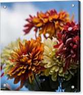 Sky Flowers Acrylic Print