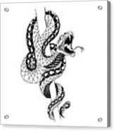 Snake Acrylic Print
