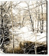 Snow-covered Stream Banks, Pennsylvania Acrylic Print