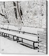 Snow In Central Park Nyc Acrylic Print