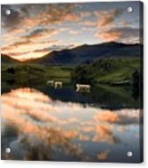 Snowdon Sunrise Acrylic Print