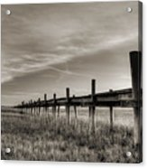 Sol Legare Dock Acrylic Print