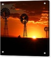 South African Sunrise Acrylic Print
