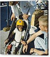 Space: Chimpanzee, 1961 Acrylic Print