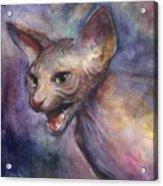 Sphynx Cat Painting Acrylic Print