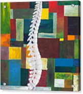Spine Acrylic Print by Sara Young