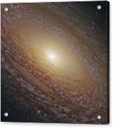 Spiral Galaxy Ngc 2841 Acrylic Print