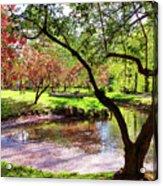 Spring At Tappan Park Pond Acrylic Print