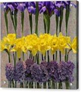 Spring Delights Acrylic Print