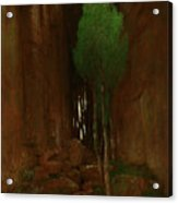 Spring In A Narrow Gorge  Acrylic Print