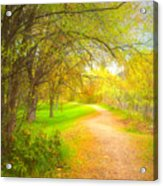 Spring Pathways Acrylic Print