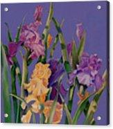 Spring Recital Acrylic Print