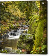 Starvation Creek Acrylic Print
