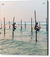Stilt Fishermen - Sri Lanka Acrylic Print