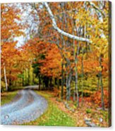 Stone Autumn Road Acrylic Print