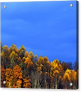 Stormy Sky Last Fall Color Acrylic Print by Thomas R Fletcher