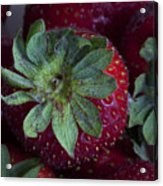 Strawberry 2 Acrylic Print