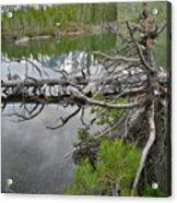 String Lake Reflection Acrylic Print