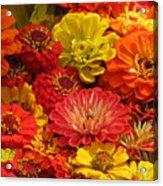 Summer Color Acrylic Print