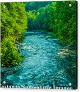 Summer Stream Acrylic Print