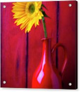 Sunflower In Red Pitcher Acrylic Print