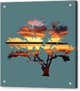 Sunrise Tree Acrylic Print