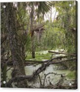 Swamped Acrylic Print