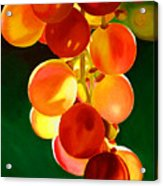 Sweet From The Sun Acrylic Print