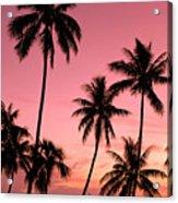 Tahiti, Papeete Acrylic Print