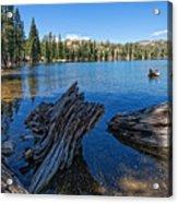 Tamarack Lake Acrylic Print