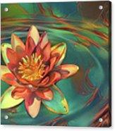 Teal And Peach Waterlilies Acrylic Print