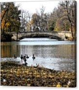 Tenney Park Acrylic Print