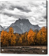 Teton Fall - Modern View Of Mt Moran In Grand Tetons Acrylic Print