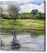 Thamalakane River At Maun Botswana 2008  Acrylic Print