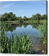 The Cotswold Water Park Acrylic Print