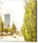 The Hedge By The Sidewalk During Day In The City Of Los Angeles Acrylic Print
