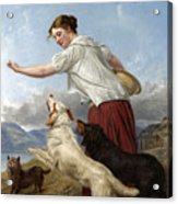 The Highland Lassie Acrylic Print